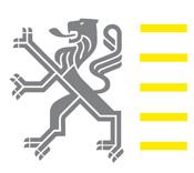 Vlaamse overheid / Vlaamse leeuw (logo)