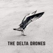 The Delta Drones