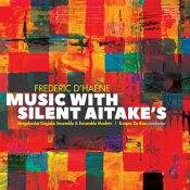 Frederic D'Heane - Music with Silent Aitake's